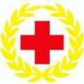 郎溪县红十字会防控肺炎疫情捐赠款物接收及发放情况公示第27期
